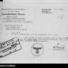Okupacyjny dualizm źródeł archiwalnych (1939-1944)